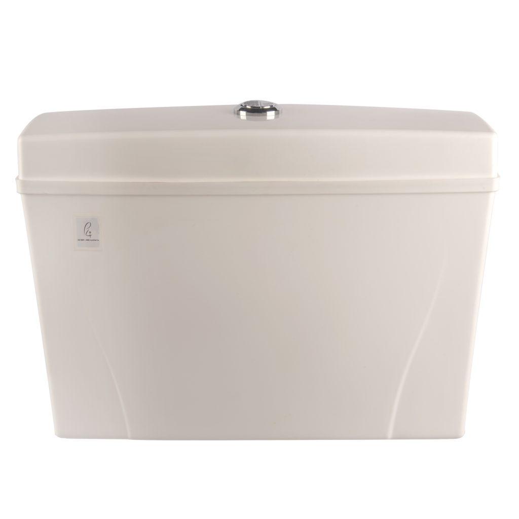cistern dual flush